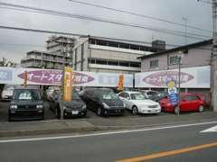 在庫は常時30台ほど。ちょっと珍しい希少車や低走行車などが満載です!!
