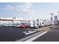 展示場には、常時25台以上中古車を展示しております。軽自動車からハイブリッド・1BOXカーまで幅広い品揃えです。