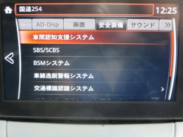 SBS SCBS BSM 車線逸脱警報装備