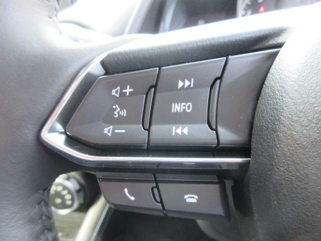 ハンドル左にはオーディオコントロールスイッチ付きです。