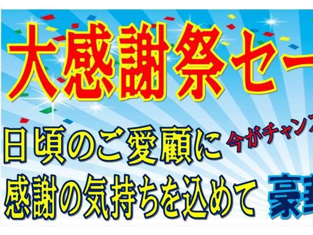 ☆大感謝祭セール☆日頃のご愛顧に感謝して、豪華オプションセットを付けて、お得に販売します!この機会をお見逃しなく!!