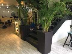 ◆店内は観葉植物もあり落ち着いた雰囲気です。ごゆっくりおくつろぎ下さい!