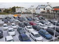 関西エリア最大級の展示場には、常時70台以上の在庫車を展示しております。お気軽にお問合せくださいませ。