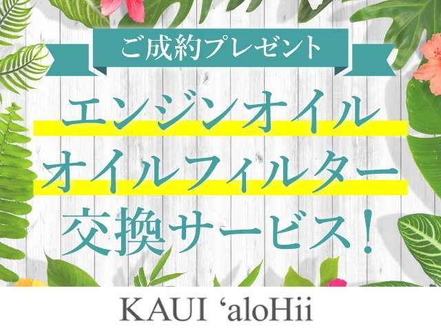 Hawaii 雑貨、海外シューズ、ハンドメイドピアス、カー用品など店内にて販売致しております。