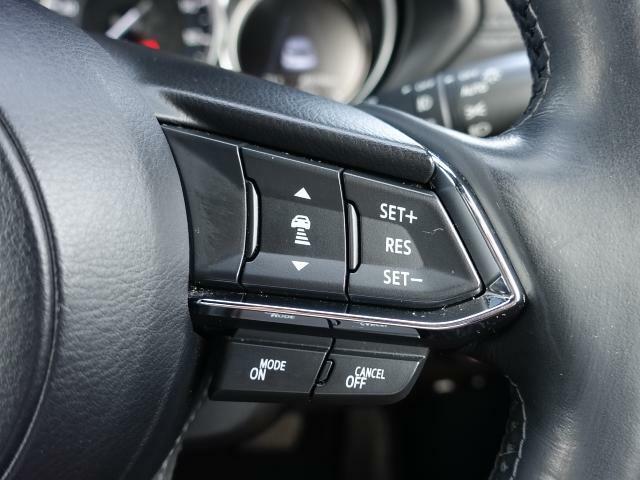 ステアリングには各種スイッチを配置。左手は主にオーディオの操作を、右手は「レーダークルーズコントロール」の操作を行えます。