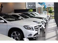 広々としたショールームに幅広い車種を展示しております。