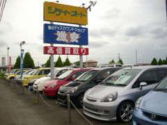 シティーオートは在庫150台!ファミリー向けミニバン♪低燃費で経済的コンパクト!スポーツCAR!珍しい旧車を展示中なんです!