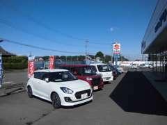 広々とした新車展示場。新型車の試乗車を多数展示しております。