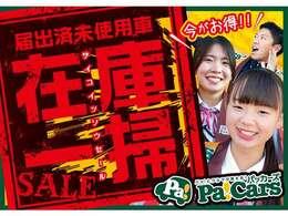 パッカーズ在庫一掃セール開催中!!先着30名様限定で最大30万円補助!!