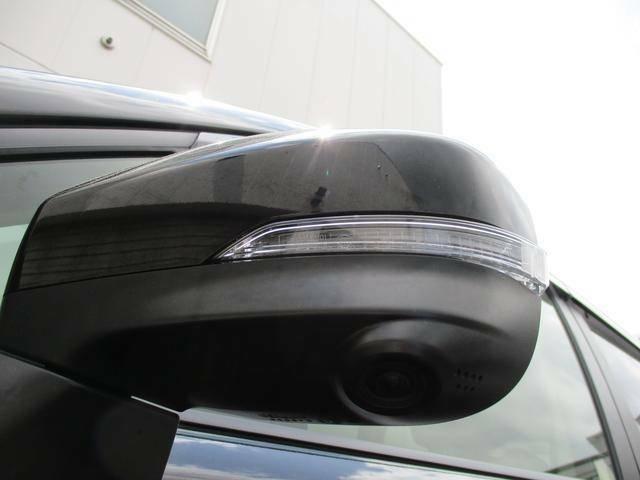 ドアミラー内蔵カメラです!運転席から死角となる車の左前方ろ確認できます。