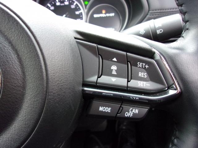 全車速追従式のレーダークルーズコントロール!