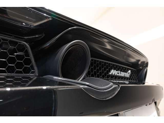 ステルスパックを選択している為、マフラーエンドはマットブラックのカラーリングに変更されております。