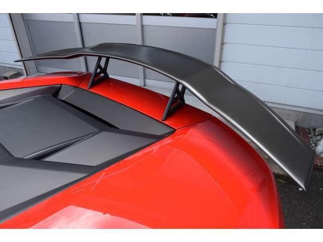 MANSORY / マンソリー リアウイング Type-II VisibleCarbon カーボン