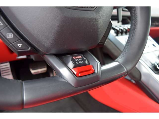 ドライブモードをSPORTやCORSAに上げると、排気音はさらに迫力を増し、回転合わせのブリッピングは気がひけるほど派手になる。
