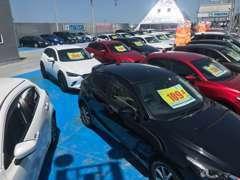 試乗車として丁寧に管理された車両も運用後に販売致しております。