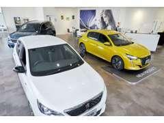 ショールームには最新車輌を4台展示中です。 ご試乗等お気軽にスタッフお尋ねくださいませ。