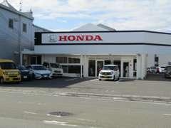ホンダカーズ中高知札場店、北隣の店舗になります。