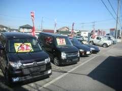 毎日ブログ更新中♪ 是非一度のぞいてください♪♪  http://activecars.on.omisenomikata.jp/diary
