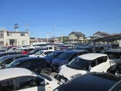 お買得な良質車を多数展示中☆一台一台じっくりとご覧下さい!