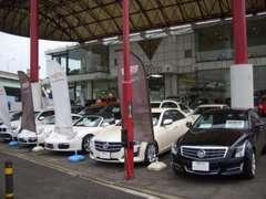 店頭には高品質な輸入中古車を豊富に展示しております。お下取り車だけではなく、買取でもご相談ください。