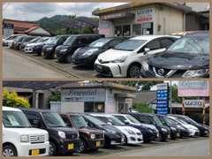 人気の軽自動車、コンパクト、セダン、ステーショワゴン、ミニバン、1ボックス、箱バン、軽トラックなど取扱い車種は様々!