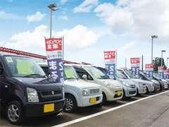 常時60台近くの展示車をご用意しております。在庫がないお車も全国オークションからお気に入りの1台をお探しします