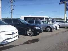 展示場には魅力的なお車がたくさんありますので楽しい車選びができます!
