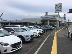 明るい新車ショールームは富山県でもトップクラスの広さです♪