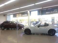 新車展示スペースもゆったりしております