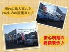 格安のミニバンも多数展示中☆憧れのアメ車・欧州車も格安販売☆