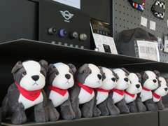 併設のMINI広島ショールームには新車、アクセサリーの展示もございます。