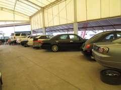 2階展示場の様子。在庫は常時60台以上!ご希望の車が無い場合は全国よりお探し致します!