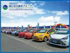 各メーカーのさまざまな車種を常時100台展示しています。実際に見て、触って、乗ってみてお気に入りの一台をお探しください!
