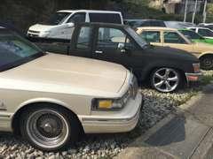 当店建物以外にも、お車の展示場所に様々な車種をご用意しております。中には、相当レアな車も!?