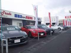 輸入車~軽自動車まで買取車を中心とし厳選した中古車を販売しております。毎月30台以上新着車両が入ってきます。