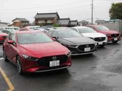 新車各車試乗車をご用意しております。