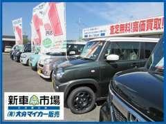 私ども大分マイカー販売は、新車市場大分原川店としてリニューアルオープンいたしました。