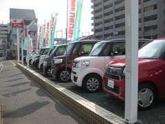 人気の軽自動車も展示しております!