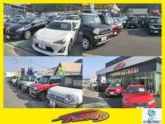 輸入車から軽自動車まで幅広く取扱い!展示場には人気車種を多数展示していますので新車から中古まで幅広くお選び頂けます。