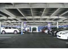 輸入車を中心に常時50台以上の屋内展示しております♪