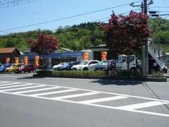 富岡エリア最大級の展示場に常時約80台をご用意しております!