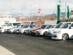 常時20~30台の展示車が用意されています。