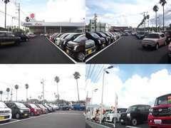 広々した展示場には常時50台以上を展示。スズキ車から他メーカーのお車まで幅広く展示中。お気軽にスタッフまでお声掛けください