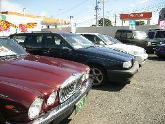 オールジャンル展開をしております。輸入車まで無料保証付きで安心のカーライフをお任せください。