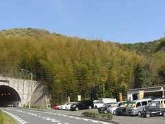 【アクセス】下関方面から小倉南区方面に県道25号線、柄杓田のトンネルを出てすぐ左手のお店です!
