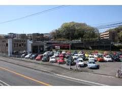 MINI専門店と輸入車専門店が隣接。お気に入りの1台を!MINI メルセデスベンツ BMW アウディ アルファロメオ等