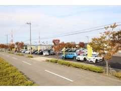 輸入車ディーラを展開している創業60年の老舗の会社です。
