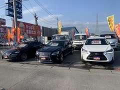 セダン、ミニバン等、様々なお車をそろえております。お客様のご要望のお車もお探しいたしますので、お気軽にご来店ください!