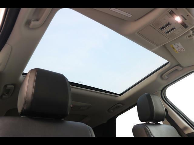 フロントシート固定パノラミックルーフ(電動ブラインドを含む)イオン空気清浄テクノロジー