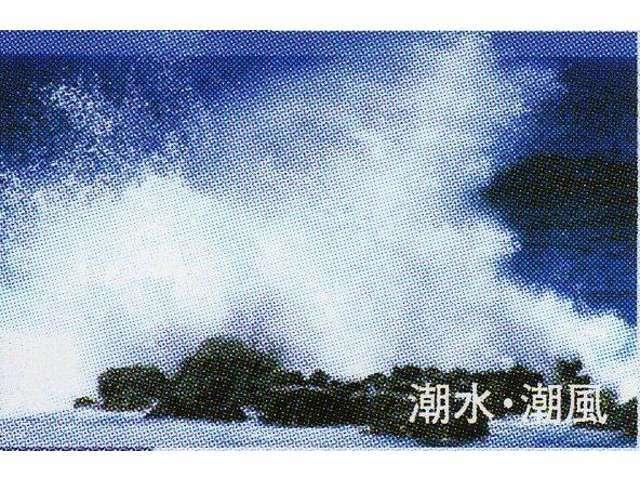 海水・潮風も、錆の原因です。